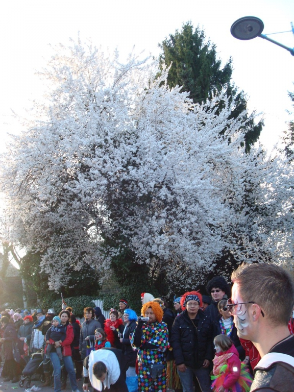 karneval-2014-413